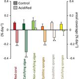 A high biodiversity mitigates the impact of ocean acidification on hard-bottom ecosystems