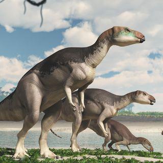Gem-like fossils reveal stunning new dinosaur species