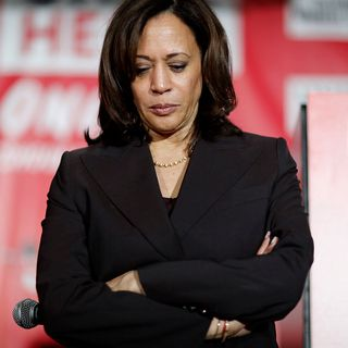 'No discipline. No plan. No strategy:' Kamala Harris campaign in meltdown