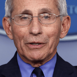Nolte: Dr. Fauci Is Either a Liar or a Fraud