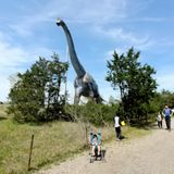 Walk and camp where Texas dinosaurs once roamed at Dinosaur Valley State Park