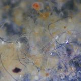 There might not be as many microplastic fibres in oceans as we feared