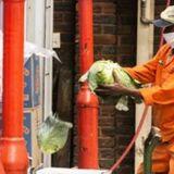 Coronavirus will hit severe developing countries | Economico Daily