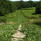 These 10 Trails In Ohio Will Lead You To Extraordinary Ancient Ruins