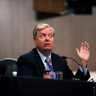 """Lindsey Graham says Trump visa restrictions will have """"chilling effect"""" on economic recovery"""