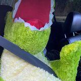 Driver caught using carpool lanes with stuffed dinosaur passenger