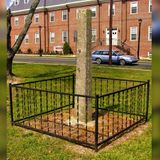 Delaware to remove whipping post previously used for public punishments and lashings