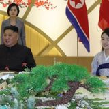'Dirty' depiction of Kim Jong Un's wife outraged North Korea: Russian envoy