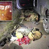 Mexican military kills 12 cartel members in shootout near U.S. border