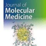 Mitigating off-target effects in CRISPR/Cas9-mediated in vivo gene editing