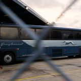 Greyhound to stop allowing immigration checks without a warrant