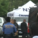 NYC Shootings Doubled for Third Straight Week; Hundreds Injured in Gun Violence Spike