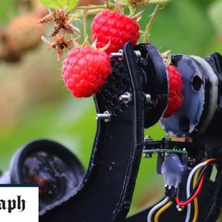 British start-up strikes deal with Bosch to build robot fruit pickers