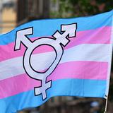 Amazon Bans Advertising for Book on Transgenderism Harming Women