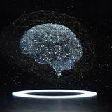 Kernel raises $53 million for its non-invasive 'Neuroscience as a Service' technology – TechCrunch