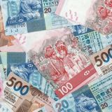 Rising debts are a danger despite low service costs - Economo